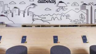 Allbirds store interior