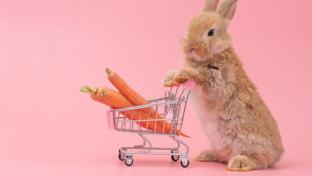 bunny with shopping cart