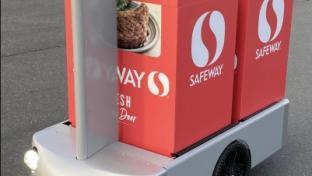 Safeway Tortoise